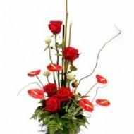 5 rosas y 6 anturios