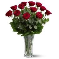 Jarrón con 12 rosas a Ecuador