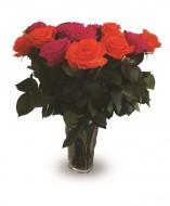 14 Rosas eternas