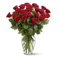 24 rosas en florero