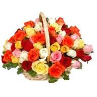 Arreglo de 50 rosas de colores